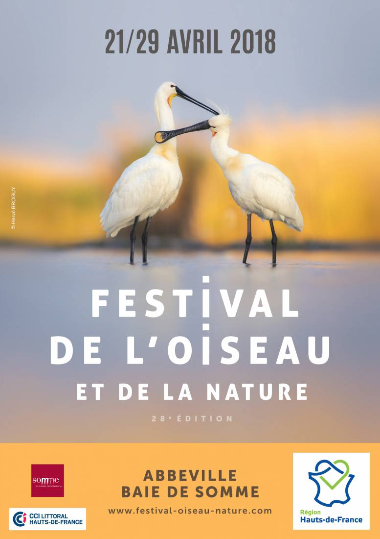 2018 Bird and Nature Festival